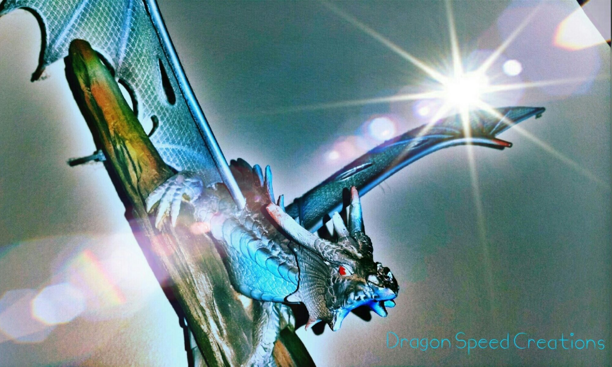 Dragon Speed Creations